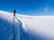 Aumento del ghiacciaio Fotografie Stock