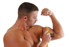 Aumento del músculo Imagen de archivo