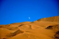 Aumento della luna in deserto Immagine Stock