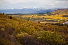Aumento della traccia del lago fish, Whitehorse, paesaggio di caduta del Yukon Fotografia Stock