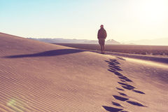 Aumento in deserto Fotografia Stock