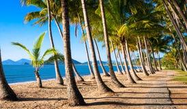 Aumento di Sun alla spiaggia tropicale Immagine Stock