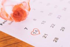 aumentou no calendário Fotografia de Stock