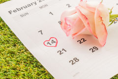 aumentou no calendário Imagem de Stock Royalty Free
