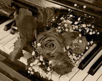 aumentou no piano - cartão Imagens de Stock