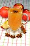 äppelcider Royaltyfria Bilder