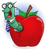 äppleboken avmaskar Royaltyfri Fotografi