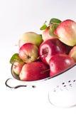 äppledurkslagred Arkivfoton