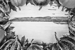 aunumn背景留给在寂静的感恩的生活木 在白色木背景的南瓜 文本的空位 在视图之上 库存图片