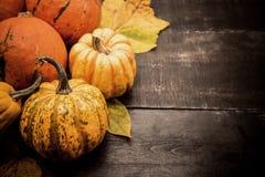 aunumn tło opuszczać życie nad spokojny dziękczynieniem drewniany jesień i spadku żniwo sezon zdjęcia stock