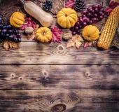 aunumn tło opuszczać życie nad spokojny dziękczynieniem drewniany jesień i spadku żniwo sezon obrazy royalty free