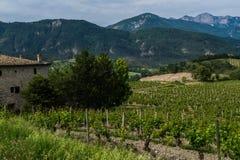 Aurel, drome, Francia Fotografia Stock