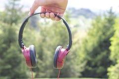 auriculares Rojo-negros a disposición en el fondo de árboles coníferos fotografía de archivo libre de regalías