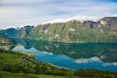 Aurlands海湾从Stegastein观点,挪威可以 免版税库存图片
