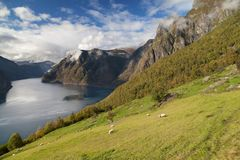 The Aurlandsfjord Royalty Free Stock Images