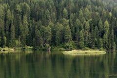 Auronzo Di Cadore, Italien Misurina Mountainsee Wald 2 lizenzfreie stockfotos