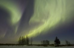 Aurora. Borealis over fields in March 2008, Gilbert Plains, Manitoba, Canada Stock Photos