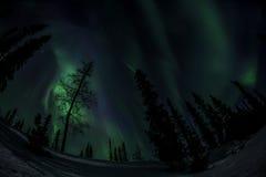Aurora7 Photographie stock