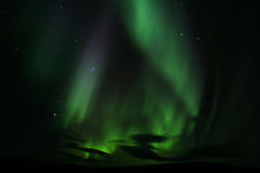 Aurora. Northern lights very close to Fairbanks Royalty Free Stock Images
