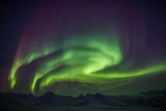 Aurora boreal através do céu ártico - Svalbard Foto de Stock