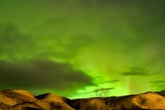 Aurora boreal, Aurora Borealis em Vik, Islândia imagens de stock royalty free