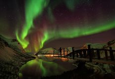 Aurora boreal Aurora Borealis Norway das ilhas de Lofoten fotos de stock royalty free