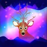 A aurora boreal com um cervo Imagens de Stock