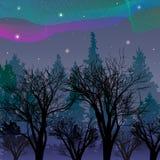 Aurora boreal sobre el ejemplo de Aurora Vector del bosque de la noche ilustración del vector
