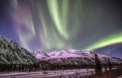 Aurora boreale in Denali Alaska Fotografia Stock Libera da Diritti