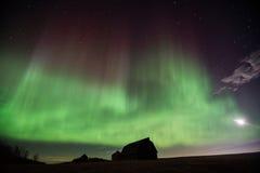 Aurora Borealis över de Alberta prärierna Arkivfoton