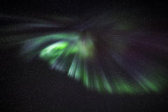 Aurora Borealis über Reykjavik Stockfoto