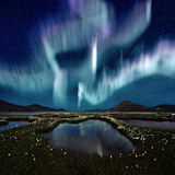 Aurora Borealis. The Northern Light over the marsh landscape with wildflowers in Landmannarlaugar, Iceland