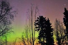 aurora borealis Στοκ Εικόνες