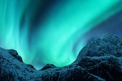 Aurora borealis above the snow covered mountain peak. In Lofoten islands, Norway. Northern lights in winter. Night landscape with polar lights, snowy rocks royalty free stock photo