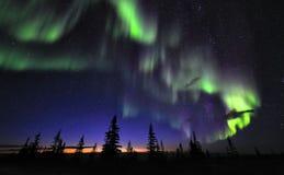 Aurora Borealis above Tundra and dark sky stock photos