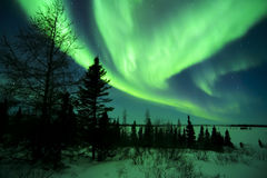 Aurora Borealis above Tundra Royalty Free Stock Photos
