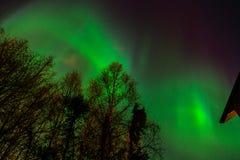 Aurora Borealis a Anchorage fotografia stock libera da diritti