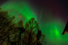 Aurora Borealis in Anchorage Royalty Free Stock Photo