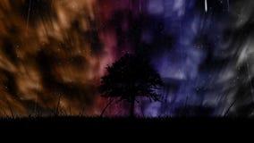 Aurora borealis background stock video