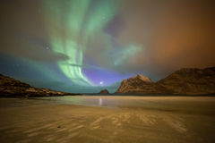 Aurora borealis on beach, Lofoten islands, Norway Royalty Free Stock Photography