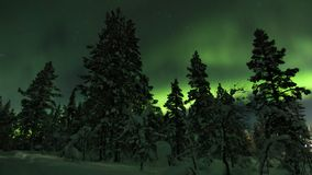 Aurora borealis behind trees in Northern Finland. royalty free stock photography