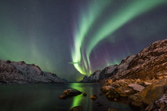 Aurora borealis über Tromso Stockfoto