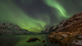 Aurora borealis costiero sopra la Norvegia archivi video