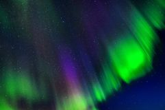 Aurora borealis Lofoten royalty free stock photo