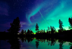 Aurora borealis de la aurora boreal sobre árboles Fotografía de archivo libre de regalías