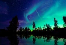 Aurora borealis de lumières du nord au-dessus des arbres Photographie stock libre de droits