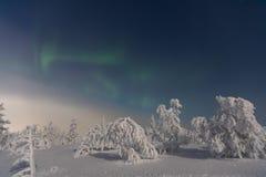 Aurora Borealis en Laponia Fotos de archivo