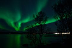 Aurora borealis forte fantástico sobre o fiorde e a montanha frios fotografia de stock royalty free