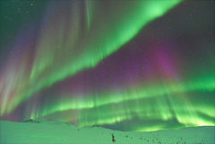 Aurora Borealis i Alaska Arkivbilder