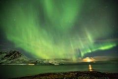 Aurora Borealis i Tromso, Norge framme av den norska fjorden på vintern royaltyfri foto